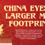 China eyes a larger MEA footprint