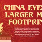 China eyes a larger MEA footprint